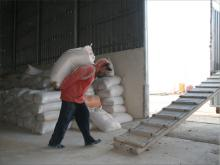 Worker at a cooperative mill in Tirbespiye