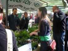 An organic market